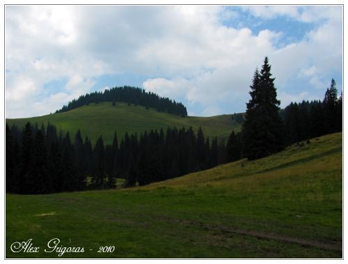 /Bihor/apuseni_066.jpg