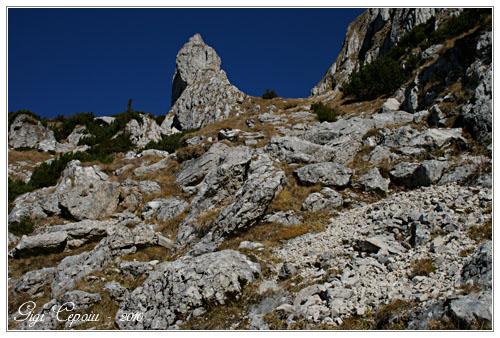 /Bucegi_6_11_2010/img_9751_copy.jpg