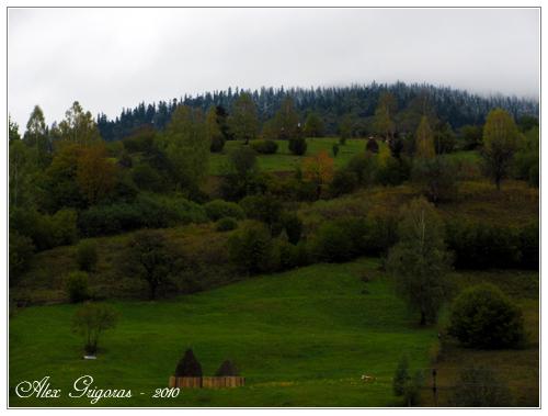 /Ceahlau_9_10_2010/ceahlau_383.jpg