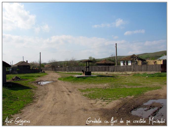 /Macin_23_04_2010/01_creasta_macin_033.jpg
