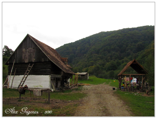 /Persani_2010/muntii_persani_519.jpg