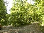 In fata spre Tutuiatu pe trseul de pe Valea Seaca -TA, la stanga spre Pasul Teilor (NIfon)