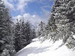 Peisaj de iarna - Traseul (BR) spre cabana meteo