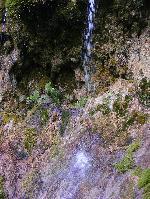Fir de apa