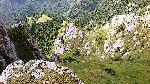 vale pe gropsoarele mici