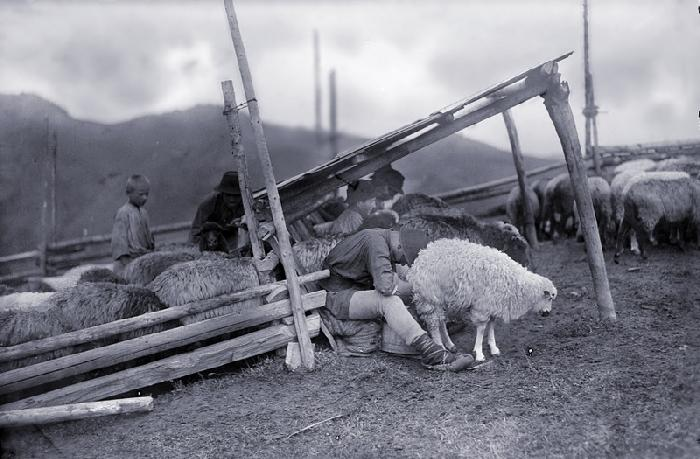 /Toponimie/mulsul_oilor_-_a._chevalier_1930.jpg