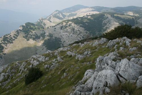 /Alpi/img_6973-j1.jpg