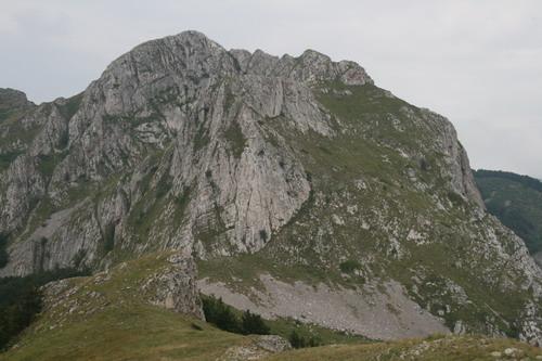 /Alpi/img_7274-art.jpg