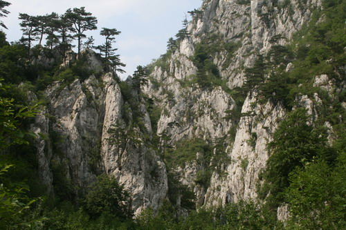/Alpi/img_7433-j4.jpg