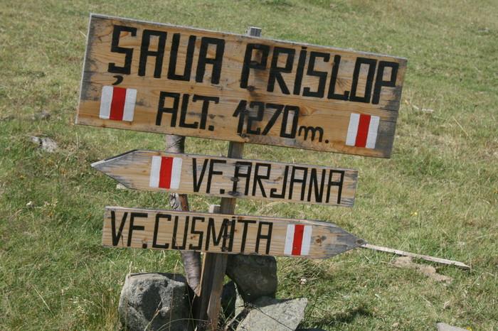 /Arjana1/img_7933.jpg