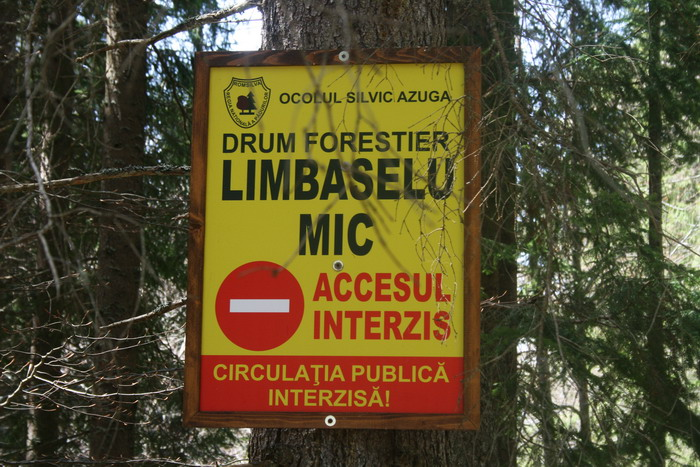 /Limbasel/img_4801-j5.jpg