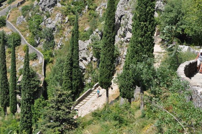 /Muntenegru2/dsc_0495-j1-jj11.jpg