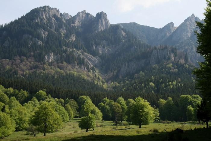 /ValeaAlpina1/img_1628-mod-j1.jpg