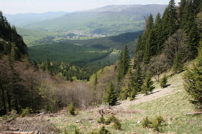 /ValeaAlpina1/img_1690-j1.jpg