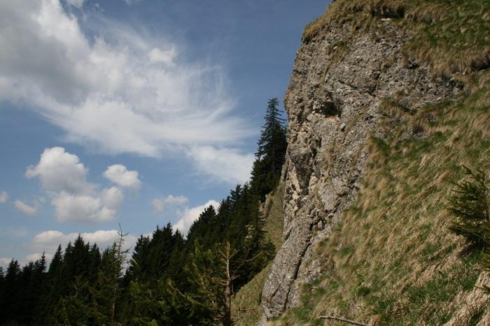/ValeaAlpina1/img_1703-j1.jpg
