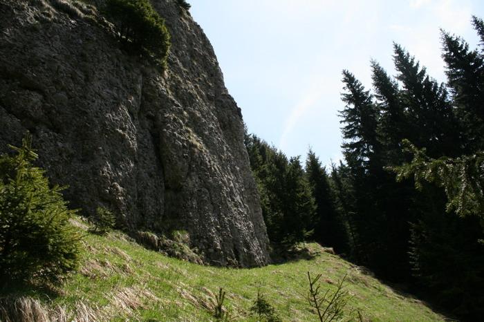 /ValeaAlpina1/img_1748-j1.jpg