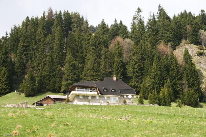 /ValeaAlpina3/img_1953-mod-j1.jpg