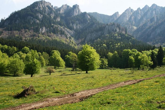 /ValeaAlpina4/img_1630-alp.jpg