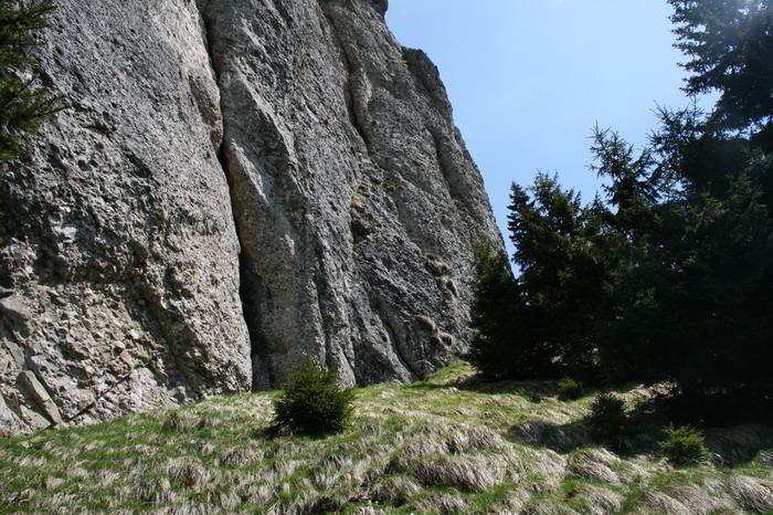 /ValeaAlpina4/img_1761-alp.jpg