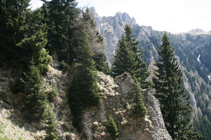 /ValeaAlpina4/img_1793-alp.jpg