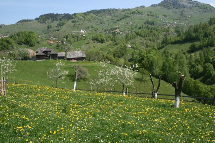 /ValeacuCalea2/img_2043-j2.jpg