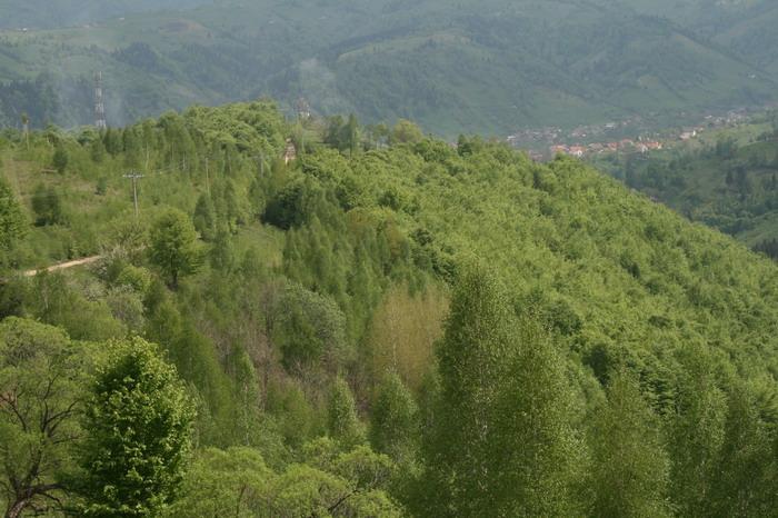 /ValeacuCalea4/img_2178-j2.jpg