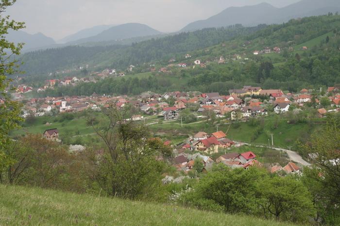 /ValeacuCalea4/img_2192-j2.jpg