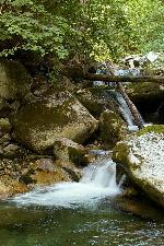 paraul Zlata - o vale salbatica