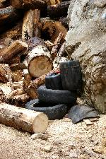 Romsilva, administrator Parc National Piatra Craiului - foto in Prapastiile Zarnestiului, arie protejata !!!
