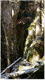 canionul Raul Mare 1