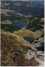 Lacul Vidal - Lacul Calcescu