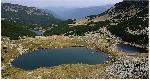 lacurile Vidal-Pecu-Calcescu