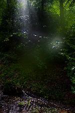 ploaie intr-o raza de soare (pe poteca de coborare de la Termopile, Crai)