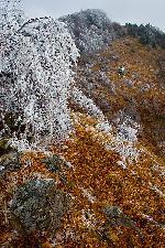 granita dintre anotimpuri