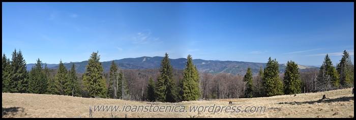 /ZboinaFrumoasa/panorama_poiana_prelunca.jpg