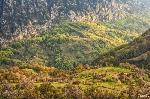 Ultimele raze pe valea Cernei