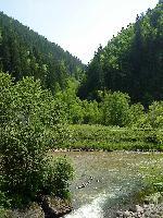 La varsarea paraului Ilva in raul Mures