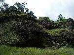 Roca din Calimani