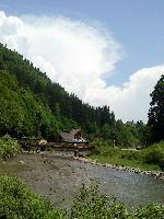 Cabanuta
