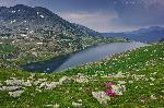 Lacul Bucura