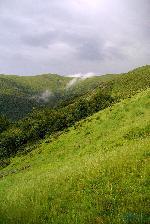 Muntii Valcan - Pasul Valcan 06.2010