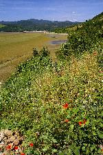 Muntii Almajului - raul Dunarea 06.2010