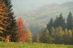 Toamna in munții Beskid MaÂły (Carpații Vestici) in Polonia