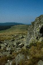 Vf. Piatra Goznei (1447) - August 2001