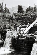 Râul LĂŁpușnicul Mare (Retezat) - 16 August 1982.