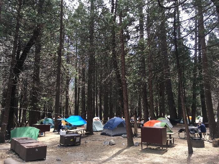 /Yosemite/img_0583.jpg