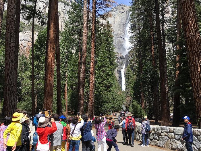 /Yosemite/img_0590.jpg