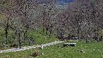Pe Valea Boiului