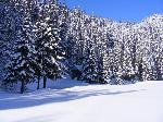 Sub protecĂžia iernii