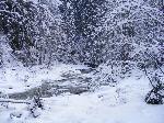 Valea Cernatului